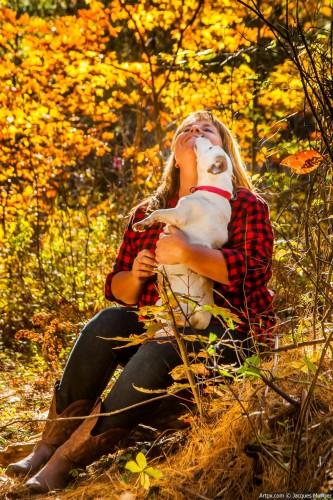 automne-chien.jpg